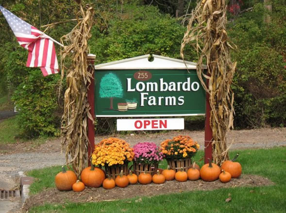 Lombardo Landscaping offers a wide range of services from landscaping to snow removal