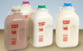 fresh milk in glass bottles
